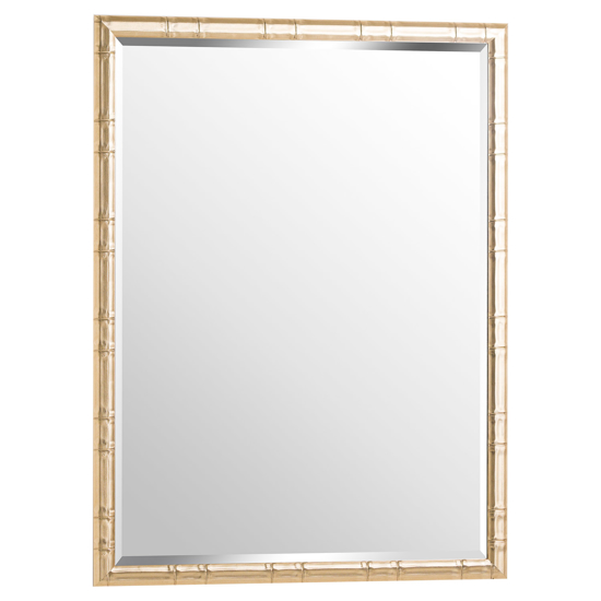 Picture of Soho Large Brass Framed Mirror