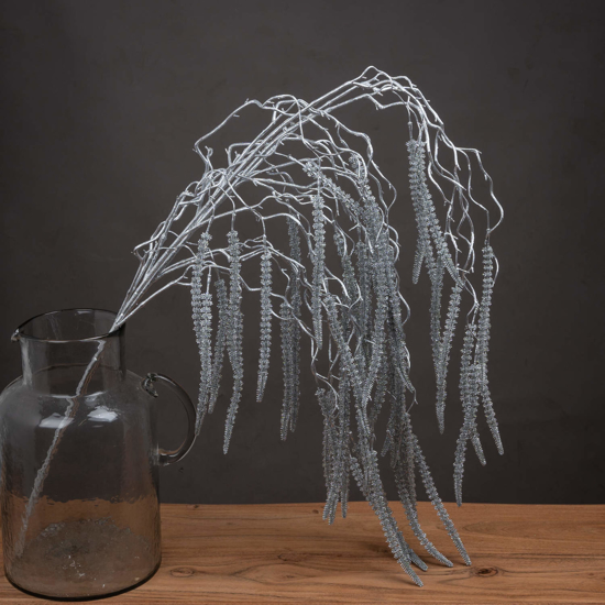 Picture of 4 Pack - Festive Silver Amaranthus